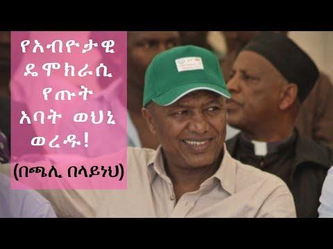 Ethiopia: የአብዮታዊ ዴሞክራሲ የጡት አባት ወህኒ ወረዱ! በጫሊ በላይነህ