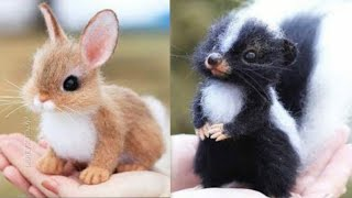 Animals SOO Cute! Cute & Funny baby animals Videos Compilation cutest moment of the animals   status