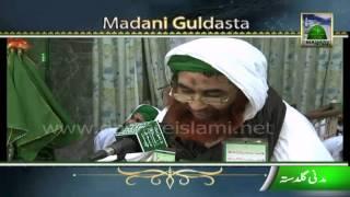 Golden Words - Shab e Barat Ki Fazilat by Maulana Ilyas Qadri - Stafaband