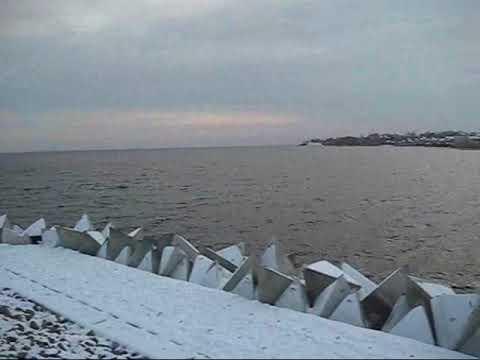 В Дубовке укрепили  берег