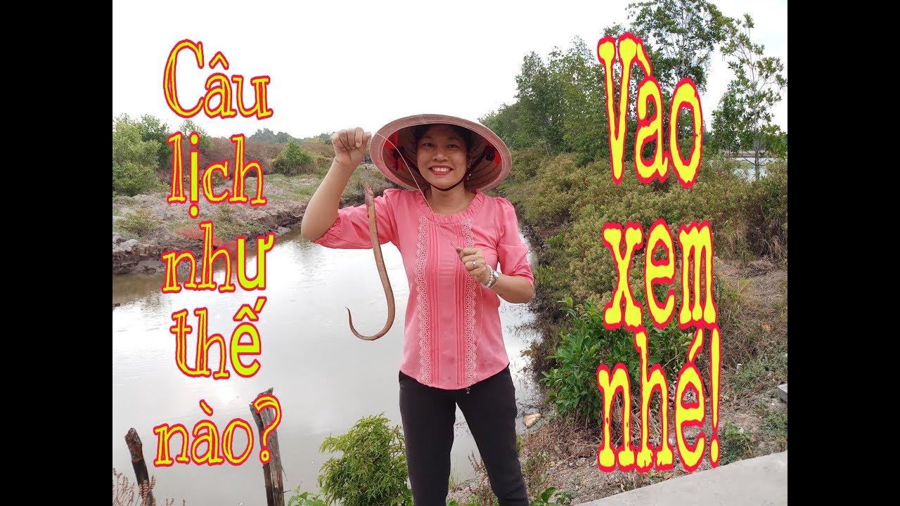 Cùng xem cách câu lươn ( lịch) trong hang/ câu lươn