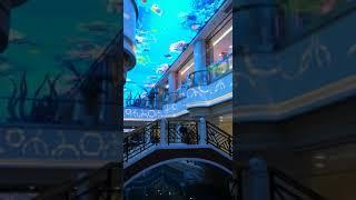 отель на Хайнане Южный Китай