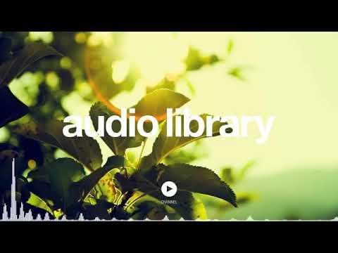 no-copyright-music-on-and-on-nicolai-heidlas-music