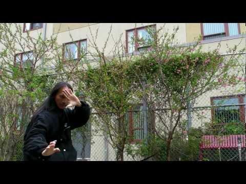 Thất Sơn Thần Quyền/ThấtSơnQuyền/ Thần Võ Đạo/ Seven Mountains Spirit Fist Kung Fu