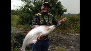 Video Cik Fatin Kolam Rahsia 6Kg (Bottom Ikan Patin Daiwa Tatula ct type R menjerit lagi) download MP3, 3GP, MP4, WEBM, AVI, FLV Mei 2018