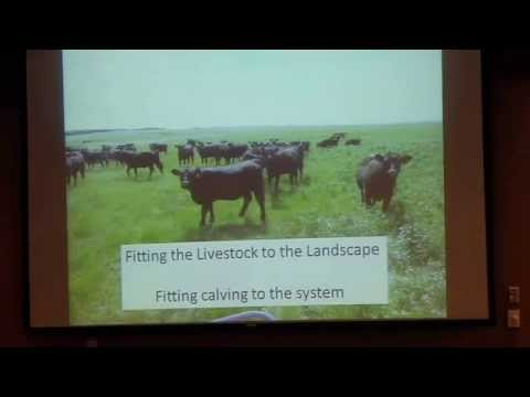 Integrating Grazing and Cover Crops