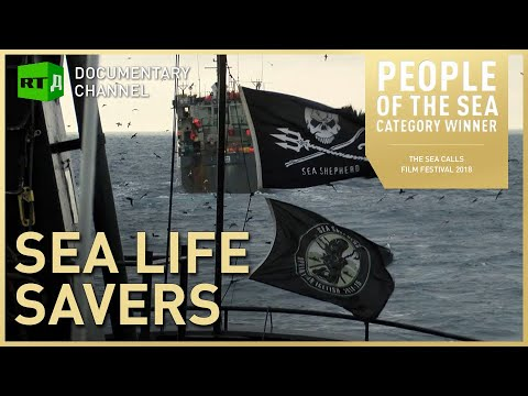 Sea Life Savers: Illegal fishing off Gabon challenged by Sea Shepherd