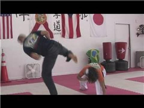 Capoeira Techniques : Capoeira Kicks
