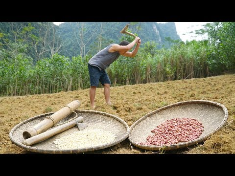 Primitive Skills; You need to know how to plant a food, watch this