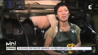 ANIMAUX : Elevage en Haute-Marne, la relève est là