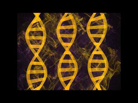 The Codes of Form (DNA Activation)