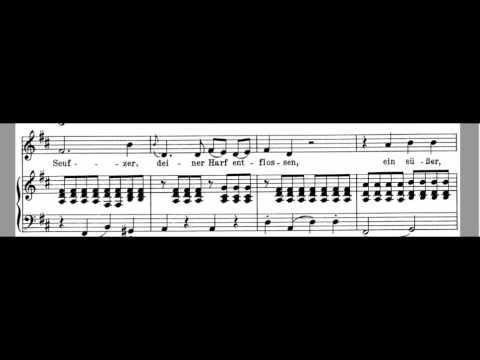 An Die Musik Accompaniment - Original Key D Major