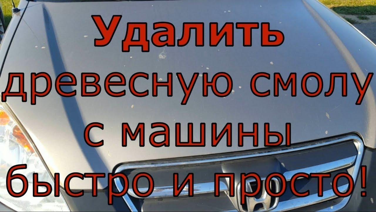 Удалить древесную смолу с машины просто! / how to remove tar from your car
