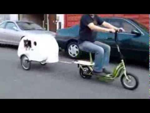 Tiny Teardrop Travel Pet Trailer In Progress Youtube