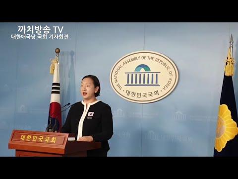 국회 긴급 기자회견   홍문종 의원 입당 관련   대한애국당 인지연 수석대변인  박근혜 대통령님 구출   2019.6.16