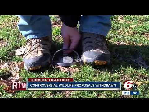 Bobcat hunting season, nuisance animal proposals turned away