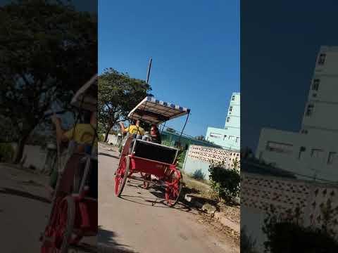 Video de Colón
