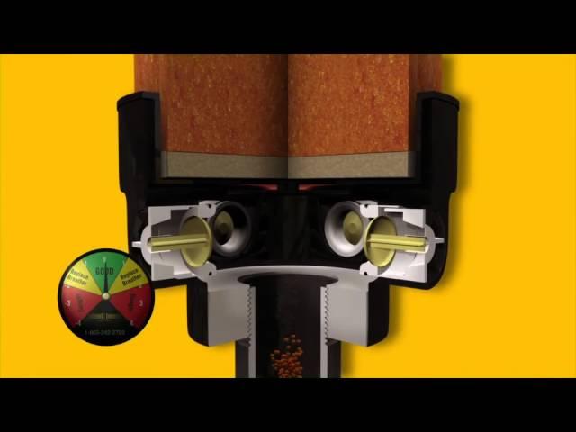 Guardian Animation