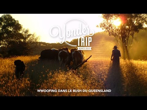 Wwoofing in the bush at Gleneden Organic Farm - YonderTrip,