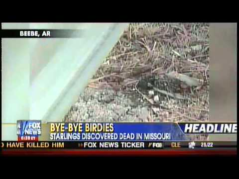 More Birds Dead in Sullivan Missouri!!    HAARP