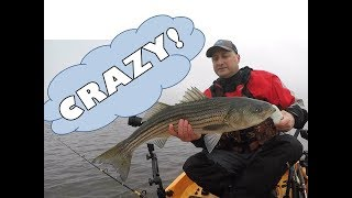 Striped Bass Fishing In The Fog