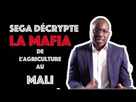 Séga Décrypte #4 : La Mafia de l'agriculture au Mali