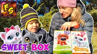 Распаковка Свит Бокс Пушистики Котята и Собачки Sweet Box новая коллекция. Видео для детей