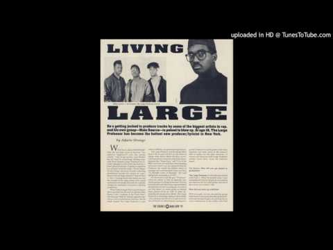 Large Professor – Live At The Barbeque (Instrumental)