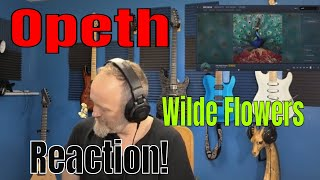 Opeth - The Wilde Flowers (Reaction)