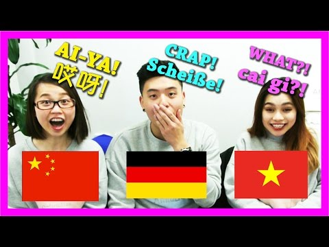 Chinese 🇨🇳  vs Vietnamese 🇻🇳 vs German 🇩🇪  interjections PART 1 | 中国 vs 越南 vs 德国语言文化大不同 - 感叹词篇