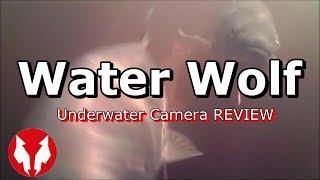 Water Wolf Underwater Camera Review 2019-With Underwater Views!