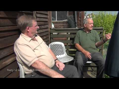 Sean's Allotment Garden 47: Chatting To 'the Old Boys' Pat And Ned (2012)