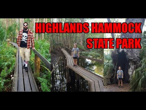 Exploring Highlands Hammock State Park