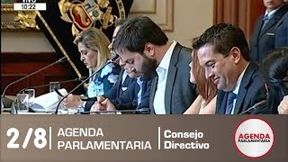 Sesión de Consejo Directivo 2/8 (21/12/18)