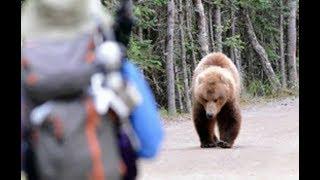 Медведь пришел на дачу к пенсионеру! Вот что было потом...