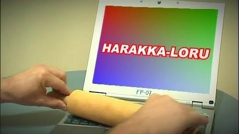 Fröbelin Palikat - Harakka-loru
