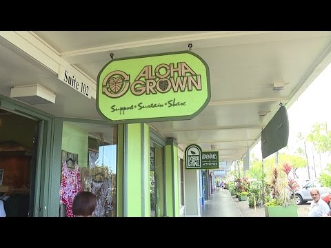 Island of Hawaii Week: Aloha Grown