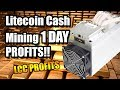 LITECOIN CASH MINING | 1 DAY PROFITS