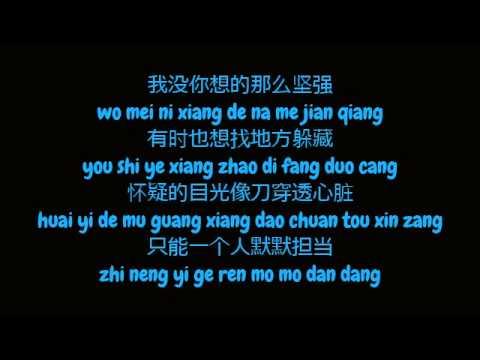 杨坤 (Yang Kun) - 我没你想的那么坚强 (Simplified Chinese / Pinyin Lyrics HD)