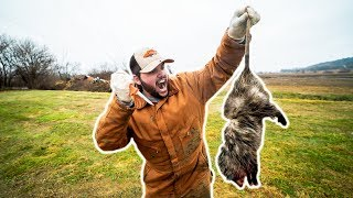 NASTY Possum CATCH CLEAN COOK!!! (GRAPHIC)