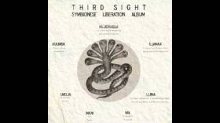Third Sight & D-styles (Symbionese Liberation) - 1. Hypothermia