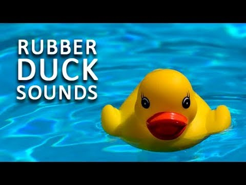 rubber-duck-toy-sounds-to-make-your-dog-happy-|-audio-toys-for-dogs-hd