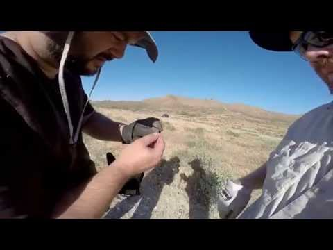 Metal Detecting at an Undisclosed Location