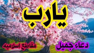 يارب 🖤🖤 ستوري اجمل دعاء/ حالات واتس اب/ دعاء جميل