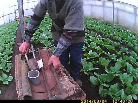 видео: приспособление ножницы для высадки рассады