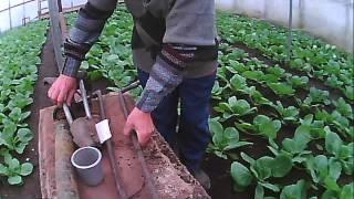 приспособление ножницы для высадки рассады