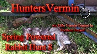 Air Rifle Hunting, Spring Powered Rabbit Hunt 8
