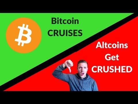 Bitcoin Cruises Up, While Altcoins BLEED Out