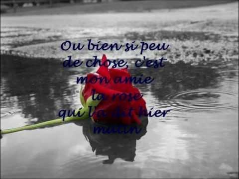 Françoise Hardy Mon Amie La Rose lyrics