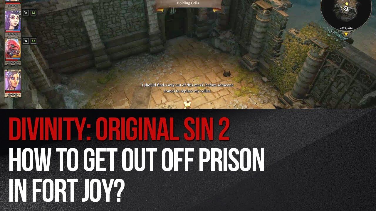 Divinity: Original Sin 2 - poradnik do gry | GRYOnline pl